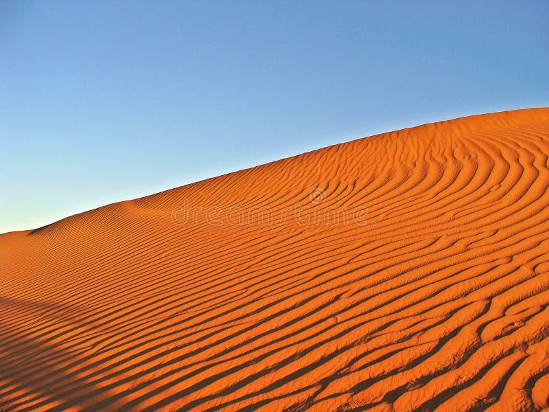 Dünen in der Marokkanersahara-Wüste stockbilder