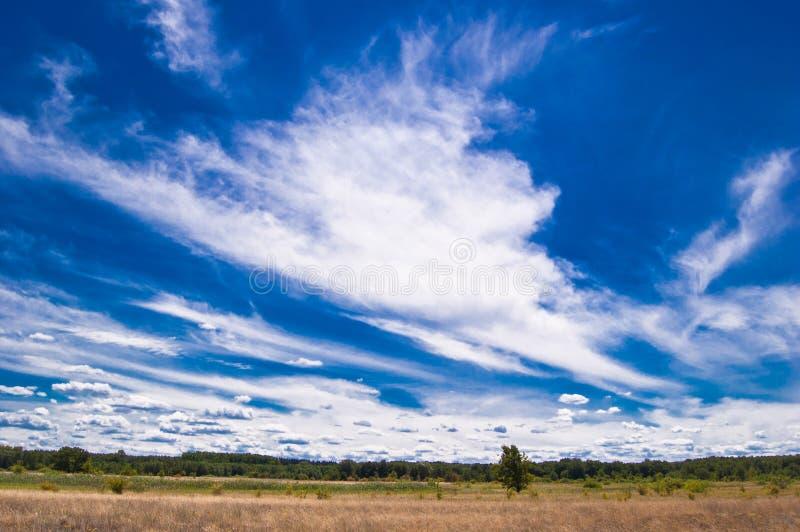 Dünen des Dnieper mit seltsamen Wolken lizenzfreies stockfoto
