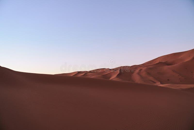 Dünen in Sahara-Wüste nach Sonnenuntergang lizenzfreie stockfotos