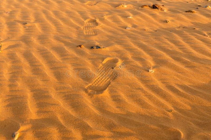 Dünenwellen in Sahara Desert stockfoto