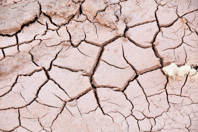 Dürre stockfoto