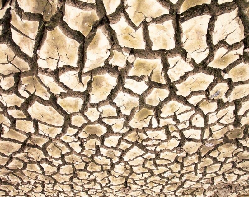 Dürre die Bodensprünge lizenzfreies stockfoto