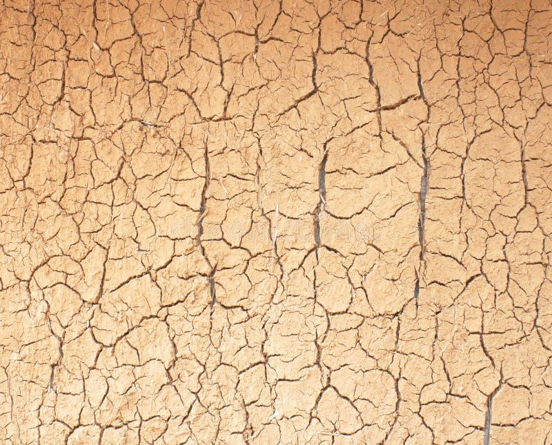 Dürre die Bodensprünge stockfotos