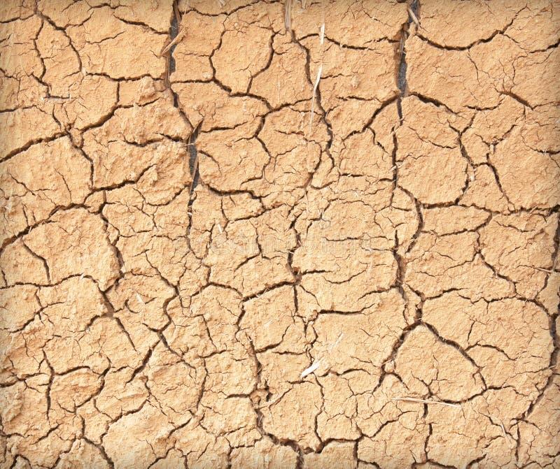 Dürre die Bodensprünge stockfotografie