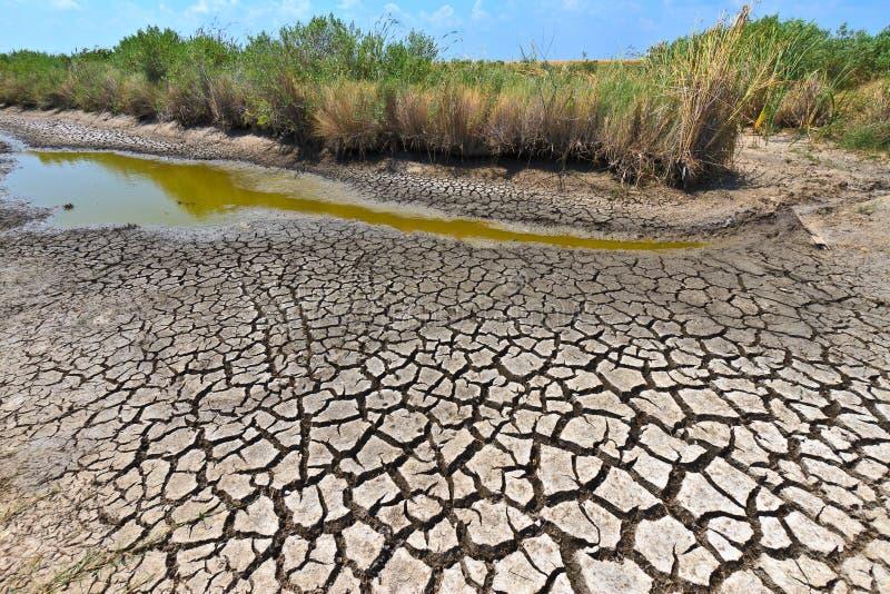 Dürre-Zustände stockfoto