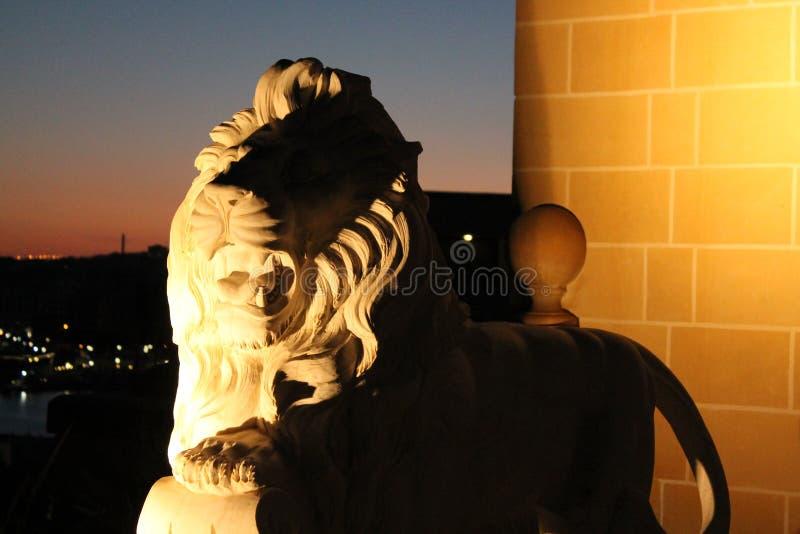 Düsterer Löwe stockbild