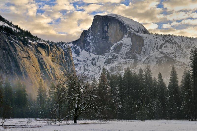 Dąb i ranek chmurniejemy w Yosemite dolinie, Yosemite park narodowy fotografia stock