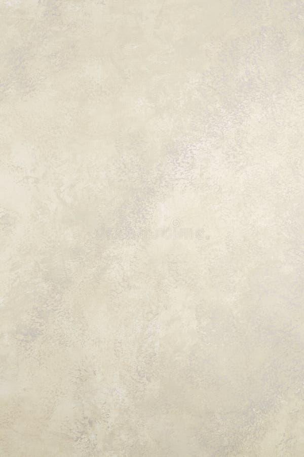 Dębna tło tekstura zdjęcia royalty free