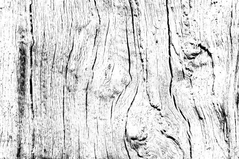 Dębowego drewna tekstura wypełniająca z pęknięciami i kępkami, projektuje drewnianego tło dla narzuty ilustracji