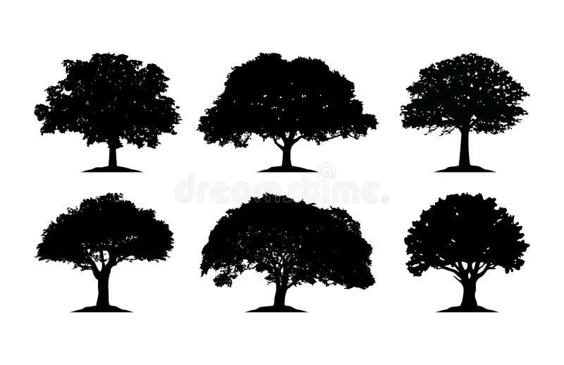 Dębowego drzewa sylwetka Cliparts ilustracja wektor