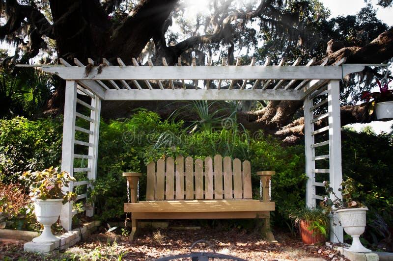 dębowy ławki drzewo fotografia royalty free