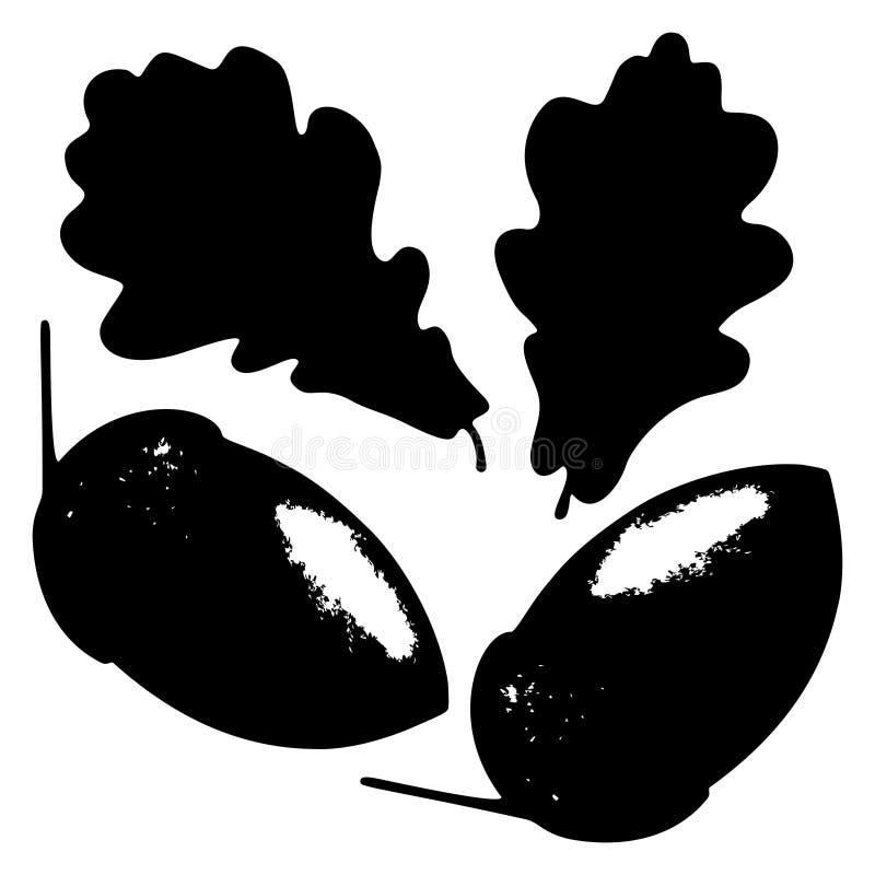 Dębowy liść, acorn i gałąź, odizolowywaliśmy sylwetkę, ekologia stylizująca ilustracji