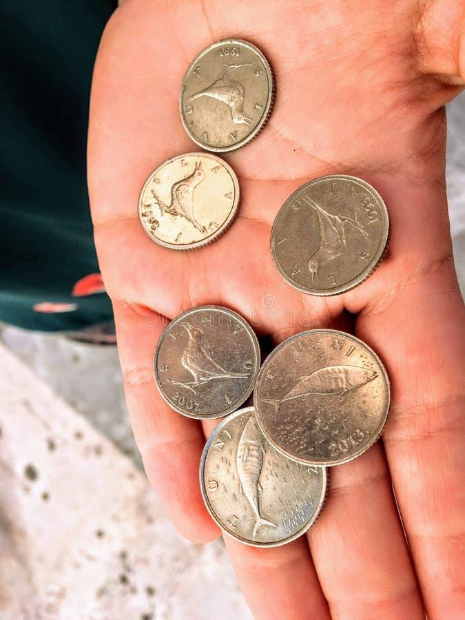 Dłoń zawierająca monety kuna z krokami Kunna jest walutą Chorwacji, używaną od 1994 roku Jest on podzielony na 100 lip obraz royalty free