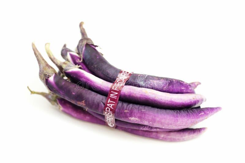 Dłudzy aubergines zdjęcie stock