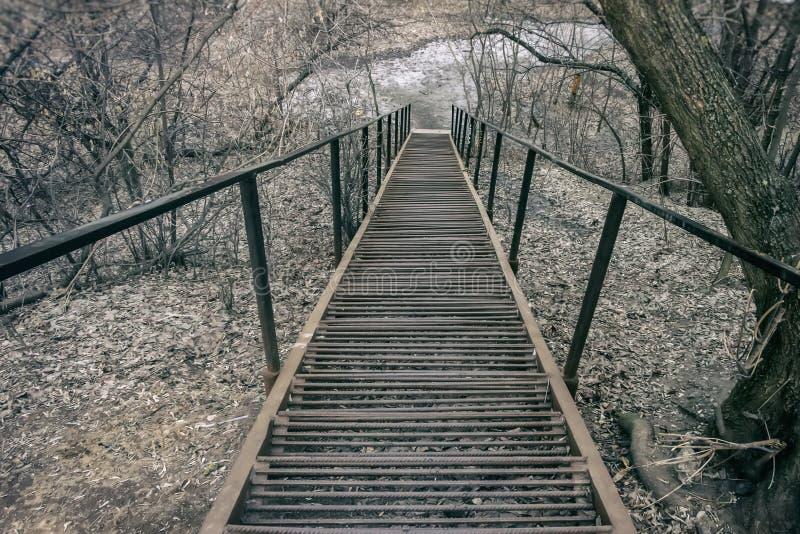 Długa metal drabina, kroki w parku z spadać brown liśćmi daleko od Opóźniona jesień Pojęcie jesień, nostalgia, sposoby fotografia royalty free