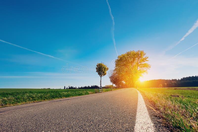 Długa pusta asfaltowa wiejska droga z biel stroną kreskową i zieloną trawą rozciąga daleko samotny drzewo i wyrusza horyzontu sło obrazy royalty free