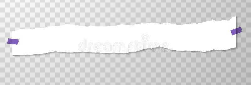 Długi Horyzontalny Torned Z kawałka papieru z Purpurowymi majcherami Opróżnia stronę na Przejrzystym tle Torned royalty ilustracja