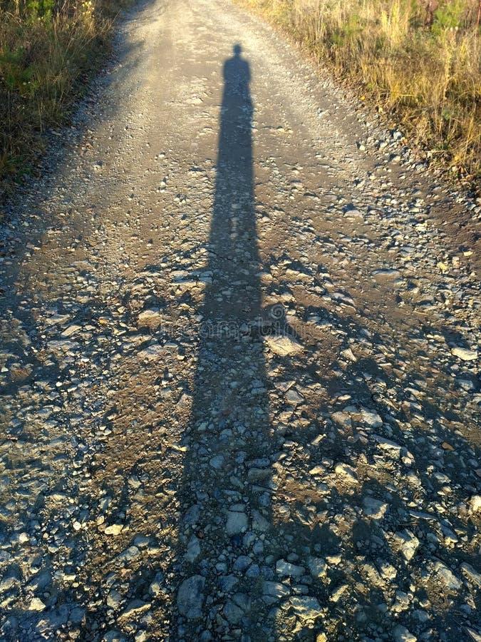 Długi ludzki cień przy zmierzchem fotografia stock