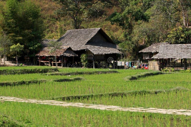 długi szyi Thailand plemię fotografia stock