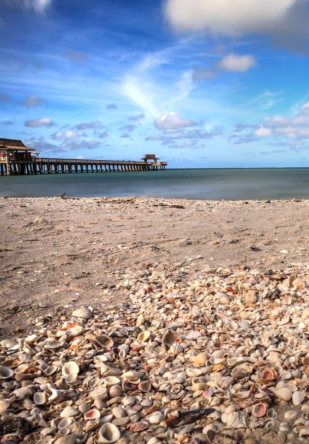 Długi ujawnienie skorupy na Naples plaży, Floryda zdjęcia stock