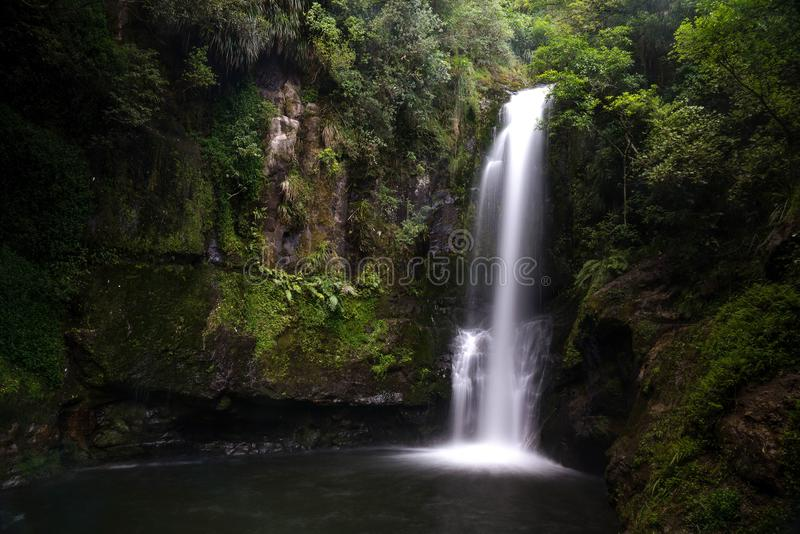 Długi ujawnienie strzelał piękna Kaiate siklawa w Nowa Zelandia obrazy stock