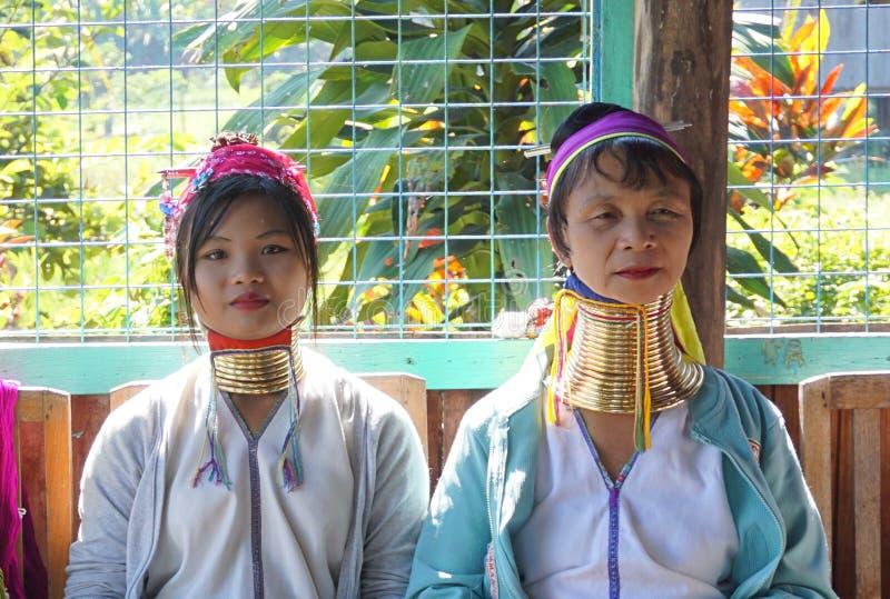 Długie szyi damy wyplatają fotografia royalty free