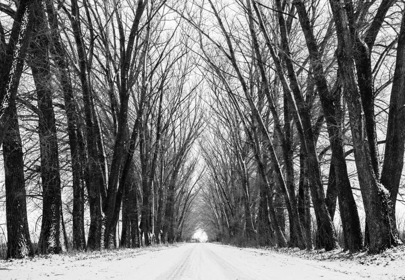 Długa perspektywiczna droga zdjęcie stock