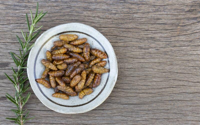 Dżdżownica insekty lub chryzalida jedwabnik w ceramicznym talerzu na drewno stole Pojęcie proteinowi karmowi źródła od insektów J zdjęcie royalty free