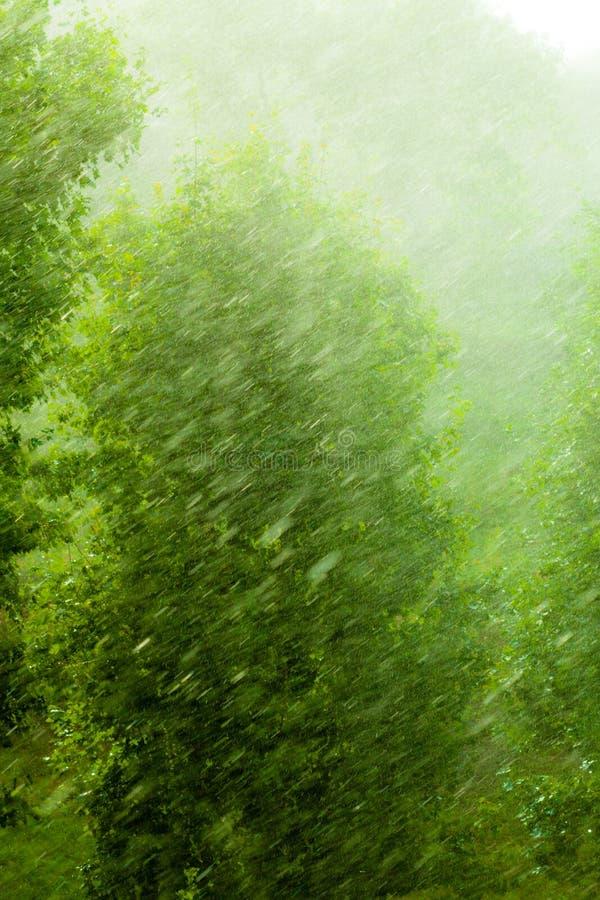 Dżdżysta outside okno zieleni tła tekstura zdjęcia stock