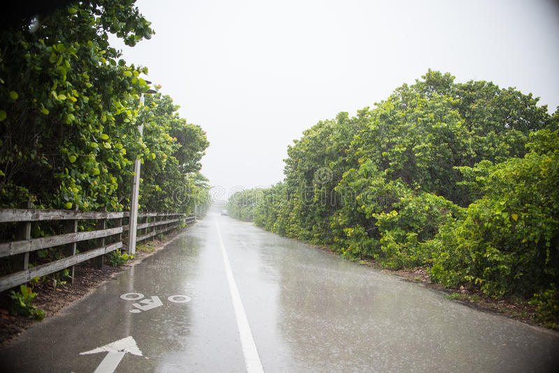 dżdżysta road obraz stock