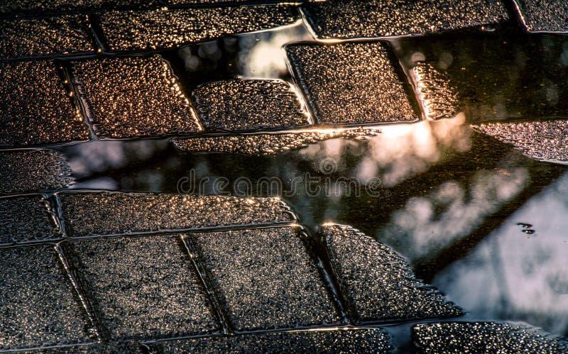 Dżdżysta sytuacja - odbicia po deszczu obrazy royalty free