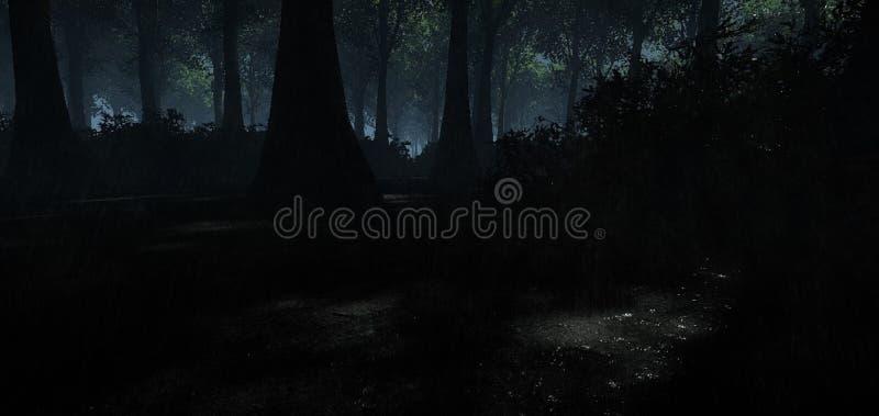 Dżdżysty las i noc ilustracji