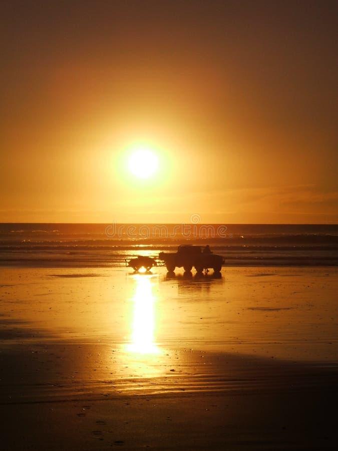 Dżetowy pojazd na 90 mil plaży & narta, przylądek Reinga, Nowa Zelandia obraz royalty free