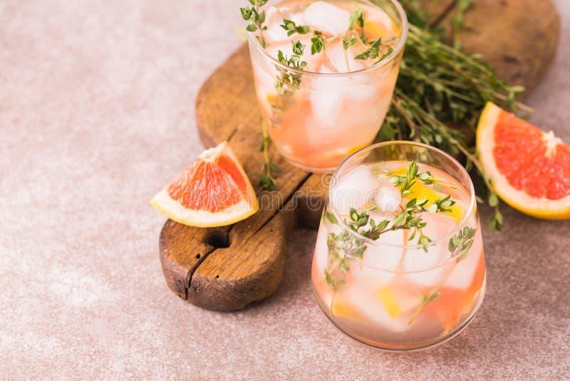 Dżin gorzka cytryna z tymiankowym i grapefruitowym Owocowa lemoniada obrazy stock