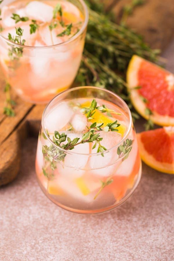 Dżin gorzka cytryna z tymiankowym i grapefruitowym Owocowa lemoniada fotografia stock