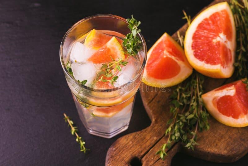 Dżin gorzka cytryna z tymiankowym i grapefruitowym Owocowa lemoniada fotografia royalty free