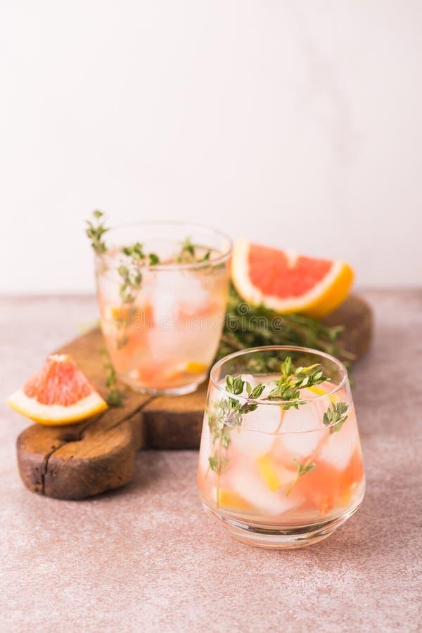Dżin gorzka cytryna z tymiankowym i grapefruitowym Owocowa lemoniada obraz stock