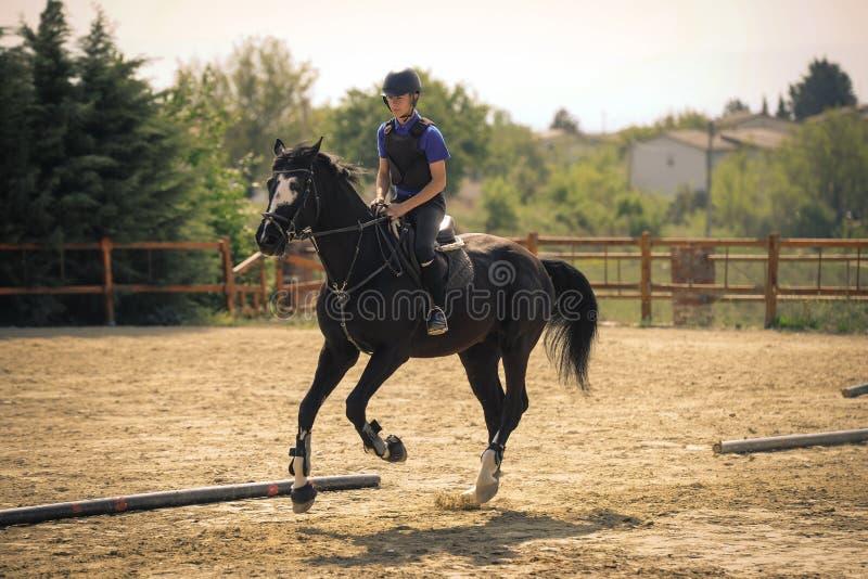 Dżokej jedzie szybkiego thoroughbred konia zdjęcia royalty free