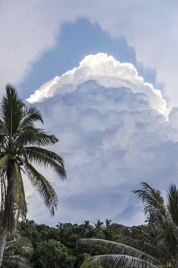 Dżungla i chmury w wyspie zdjęcia royalty free