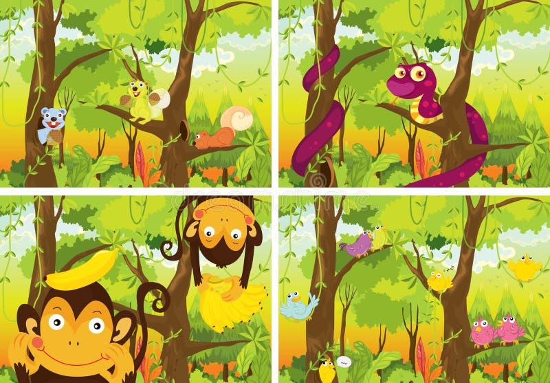 Dżungla i zwierzęta ilustracja wektor