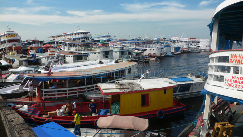 Dżungla port zdjęcia royalty free