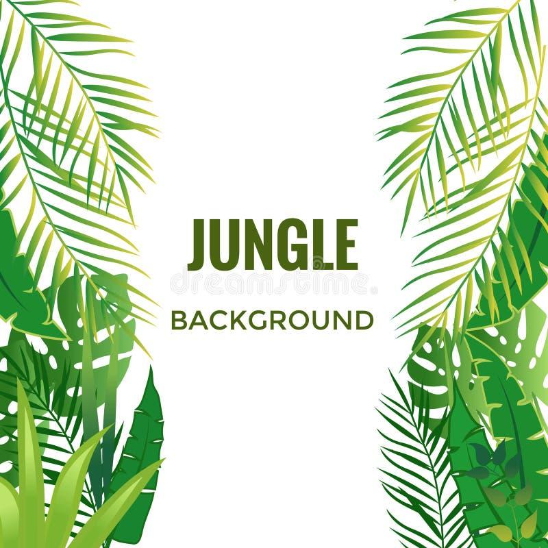 Dżungli Tło dżungla zasadza drzewa royalty ilustracja