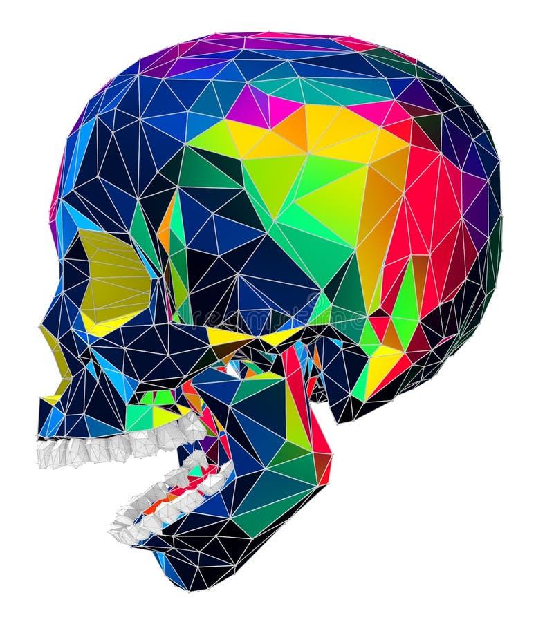3d一块人的头骨的例证有五颜六色的低多表面的 库存例证