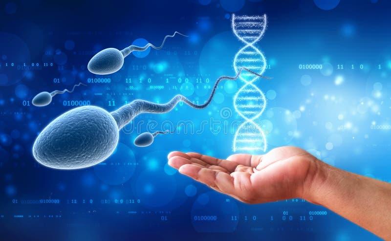 3d人的精液在医疗背景中 免版税库存照片