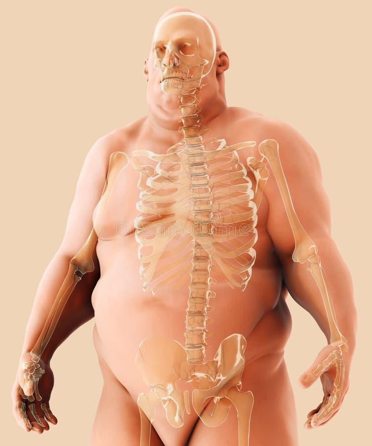 3d例证男性肥胖身分,医疗保健医疗概念 向量例证