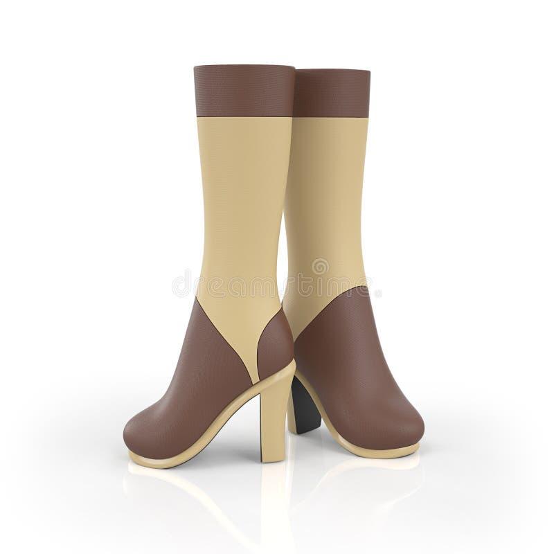 3d例证 f妇女的鞋子 库存例证