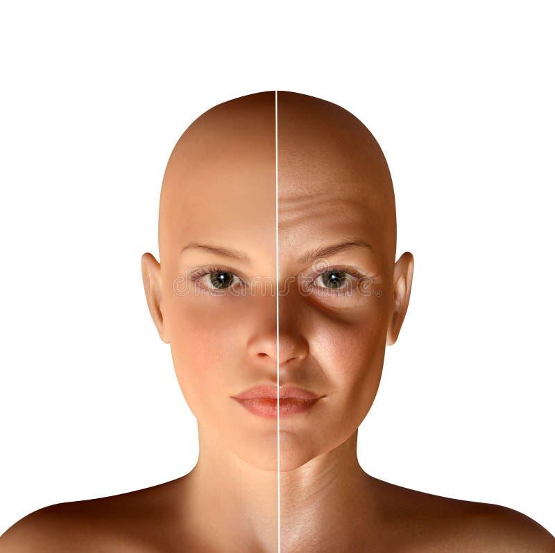 3d同样年轻和老起皱纹的面孔的例证 向量例证