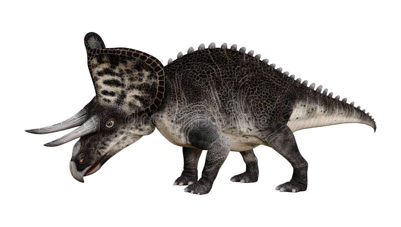 3D在白色的翻译恐龙Zuniceratops 库存例证