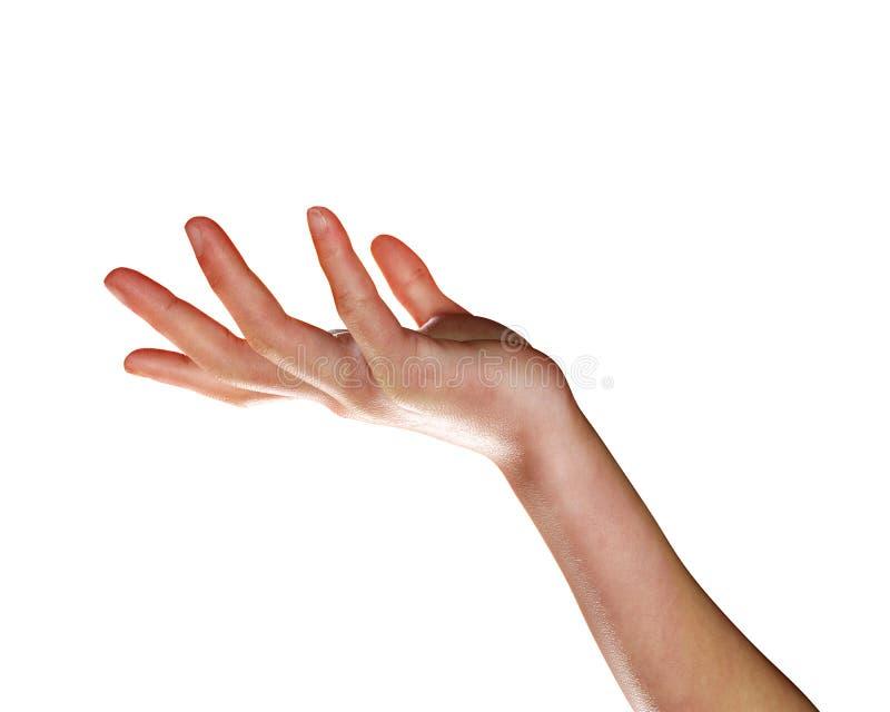 3d在白色隔绝的回报一只女性手 库存例证