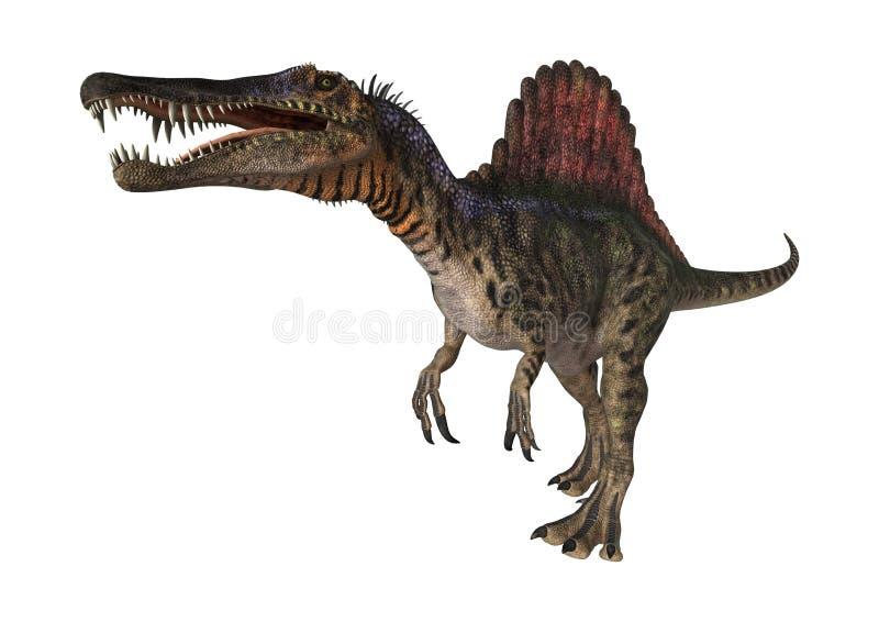 3d在路径的剪报恐龙使影子spinosaurus空白. 食肉动物, 白垩纪.